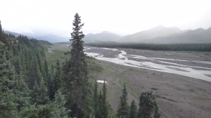 Braided River in Denali Nat'l Park
